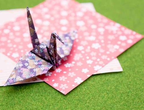 Origami Workshop ( Free )