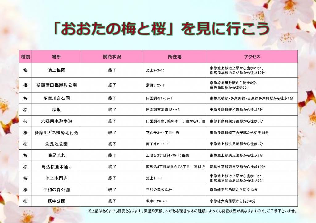 おおたの梅と桜_0409