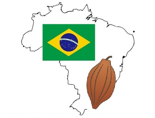 食育セミナー/世界で愛されるチョコレート~ブラジル~ ※終了