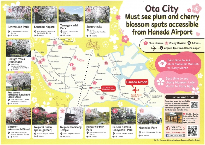 Cherry blossom spots in Ota City